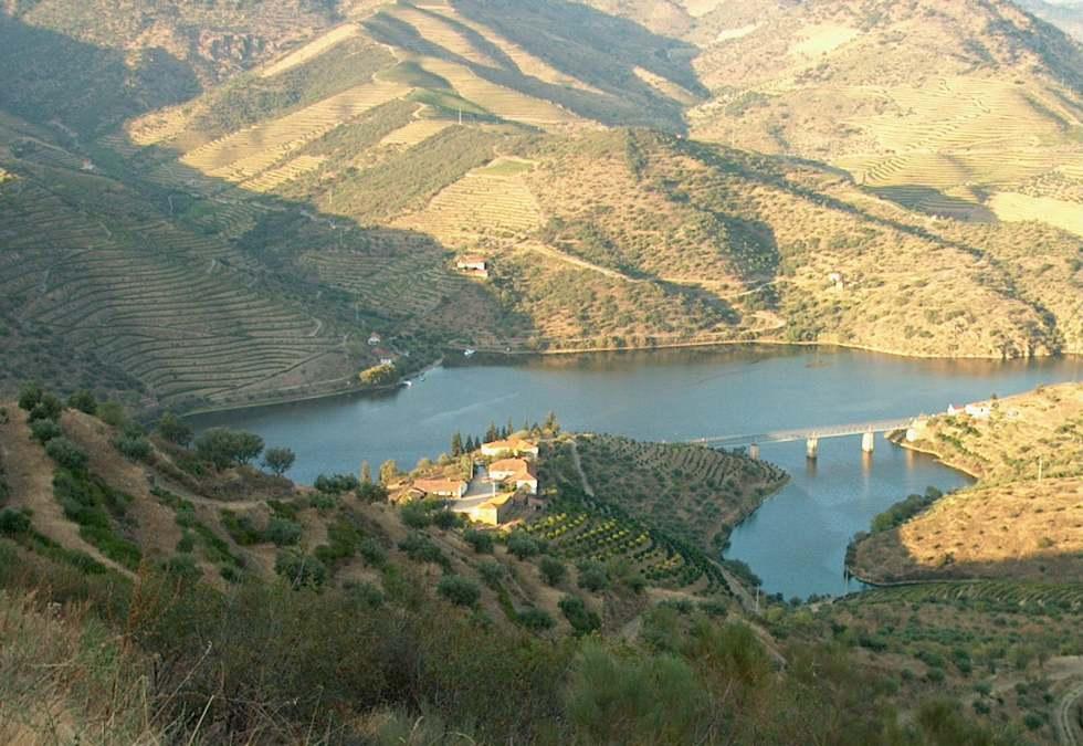 Calem Porto Quinta do Arnozelo (2)